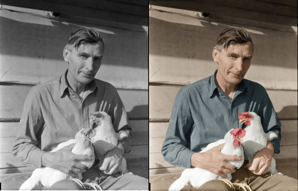Fine Photo Colorization & Restoration